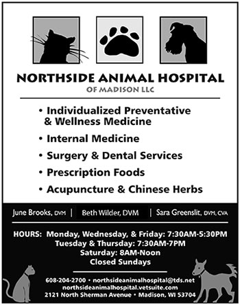 350 Northside Amimal Hosp Willy St ad 2014 350