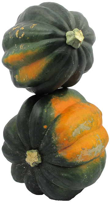 Acorn Squash | Willy Street Co-op's Winter Squash 101