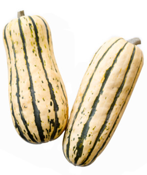 Delicata Squash | Willy Street Co-op's Winter Squash 101